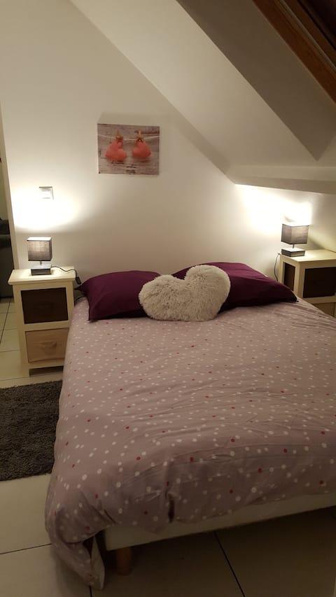 Charming apartment near Paris classified 3*