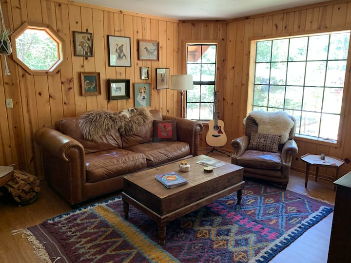 Bohemian Rustic Dog Friendly Cabin in the Pines