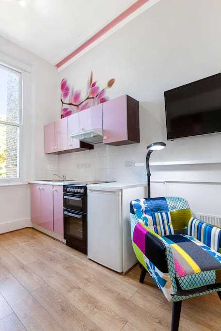 Pink Panther Studio Notting Hill 10 Apartments For