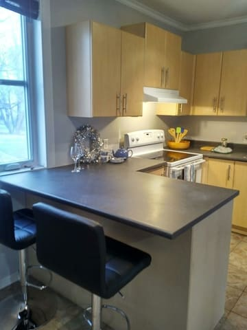 Steps to Downtown Ottawa, Renovated, Modern Unit!