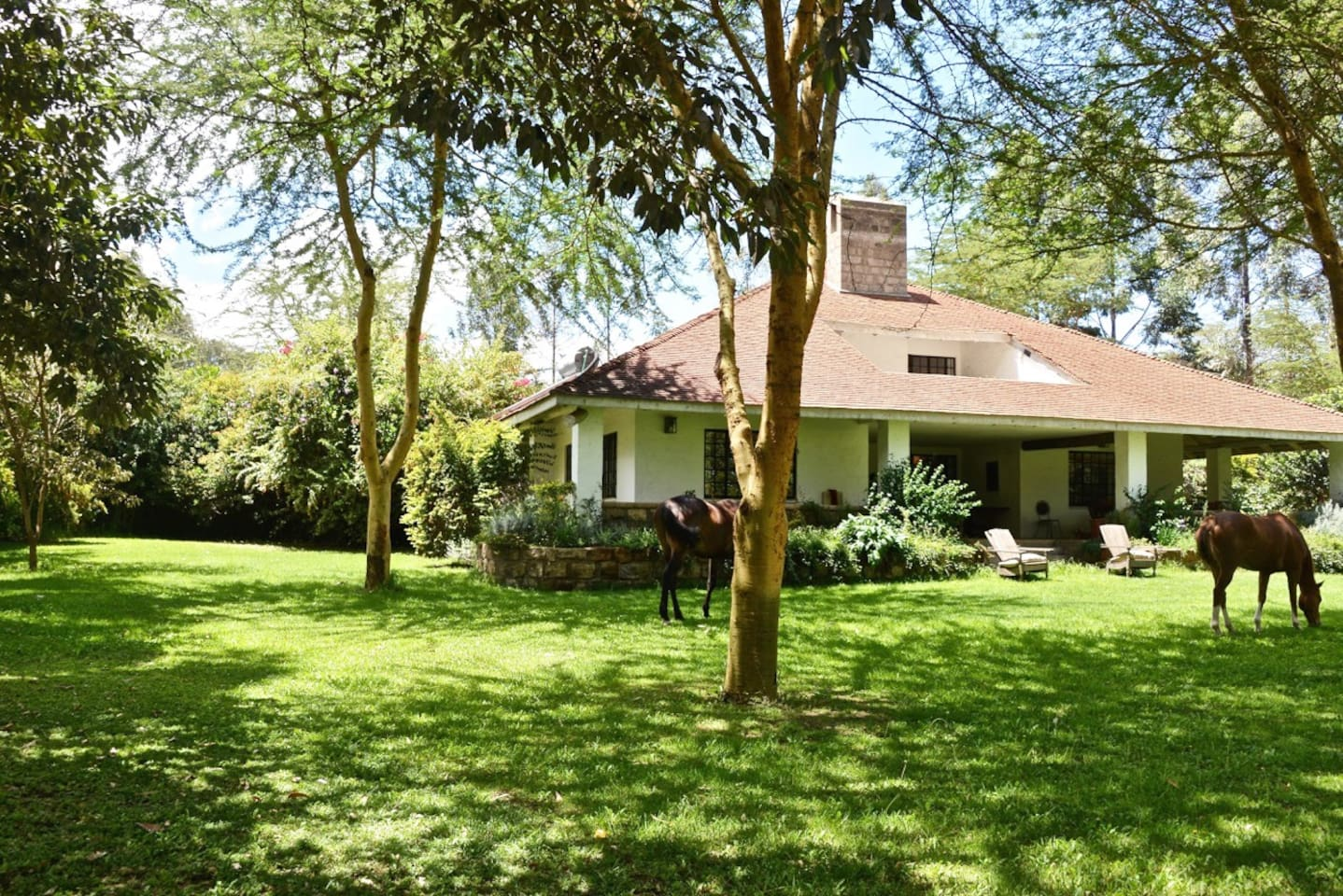 Beautiful lawns surrounding our 4 bedroom guest house