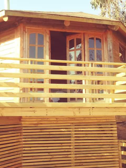 Lodge TemploVivo un lugar rodeado de naturaleza..