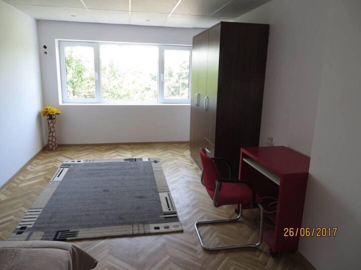 Gemütliches Einzelzimmer in Lovech