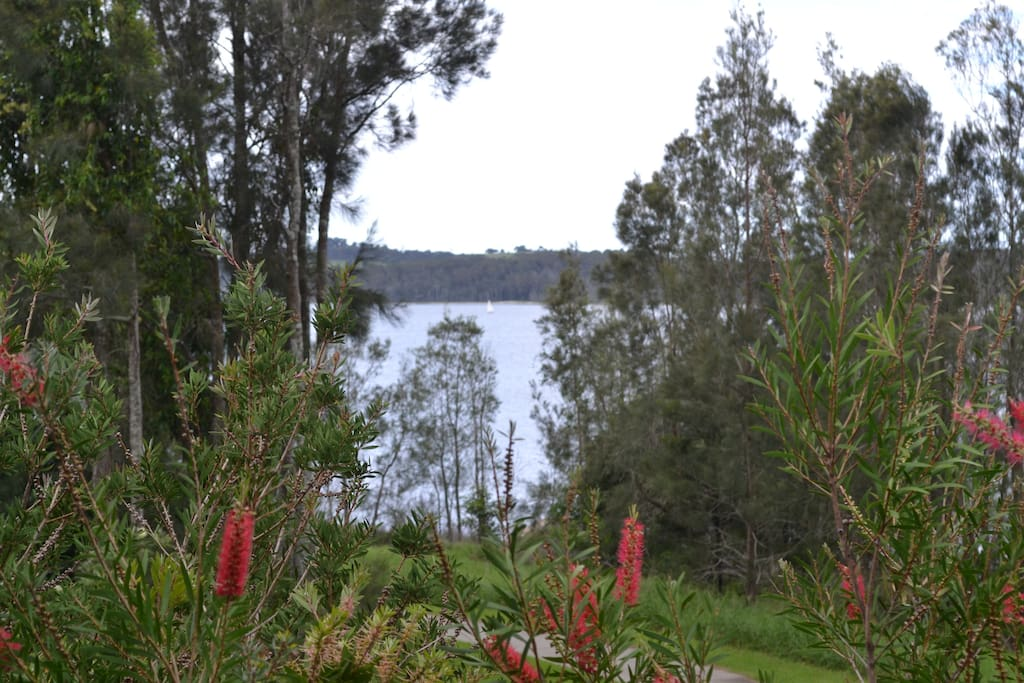 Your view of Coila  Lake, Tuross Head.