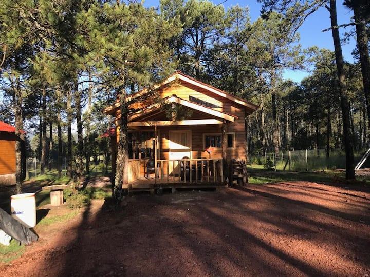 Cabaña Santa Maria en Mexiquillo Durango 03
