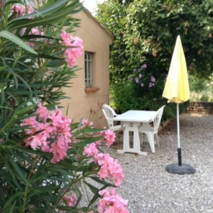 """""""LES OLIVIERS """"grand et beau T 1 en Provence verte"""