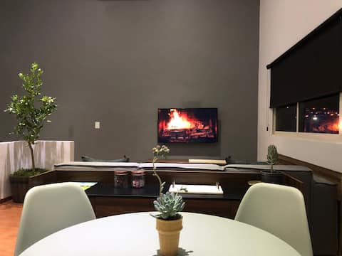 Cozy PH Apt. with great Terrace at Monterrey South