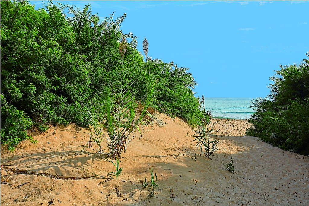 Path to Lido Fiori beach