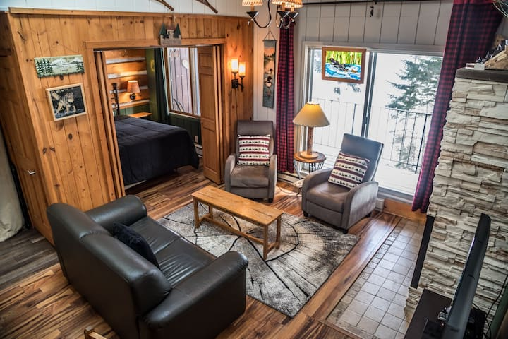 Chateau LeVeaux Condo #18 is a beautifully renovated lakefront condo located just minutes from Lutsen Ski Resort