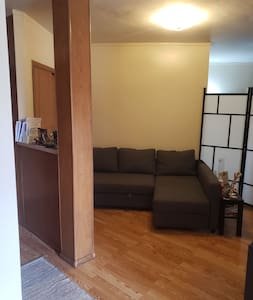 Cozy/Studio, 12 miles away from downtown Chicago