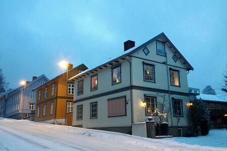 Central in Lillehammer - Lillehammer - Loft