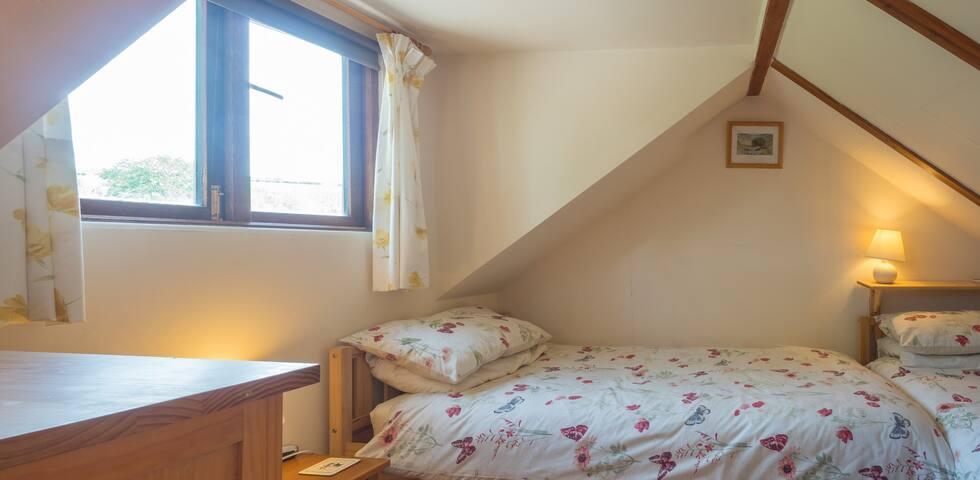 Twin attic bedroom