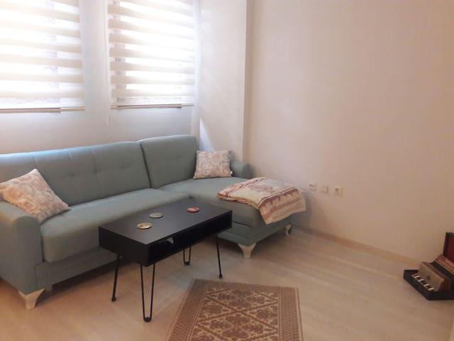Cozy comfortable flat in Kadikoy