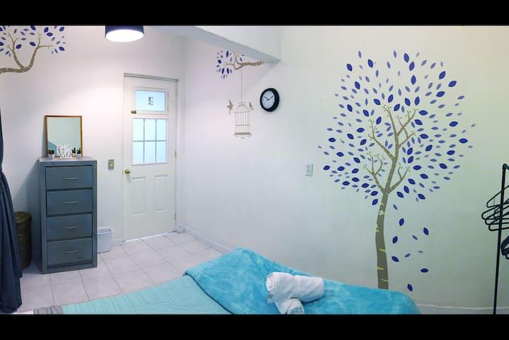 Homey and pretty room in Condesa, Mexico City