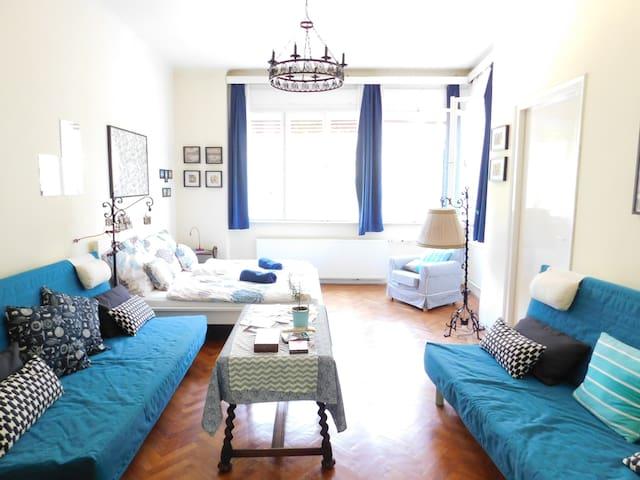 Beautiful & Green Bauhaus flat with 2 balconies
