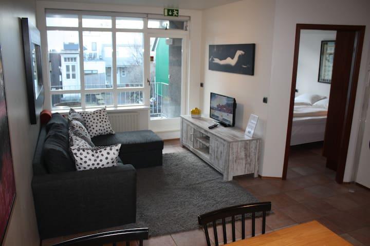 Cozy Downtown Apartment for four - Parking garage