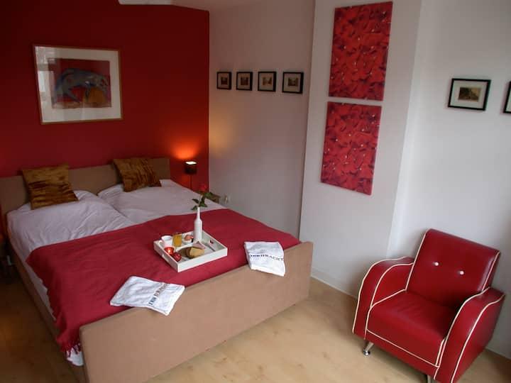 Mooie ruime kamer in B&B in het centrum van Venlo