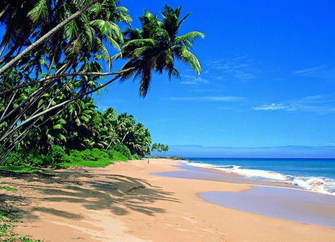 resort 150meter to beach 12 minute to Hikkaduwa