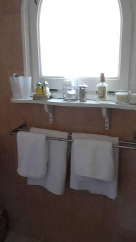 Baño con ducha y todo lo prescindible para su aseo.