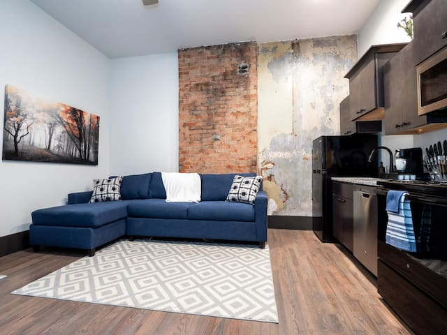 Amazing Apartment in the Heart of OTR- Unit 13