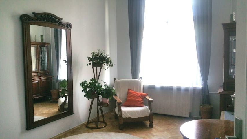 Sunny 1-bedroom flat in the Old Town- Krakow