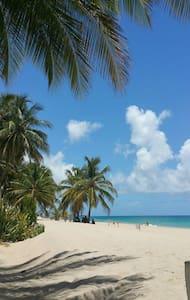 Beach Home Getaway - San Juan - Hus