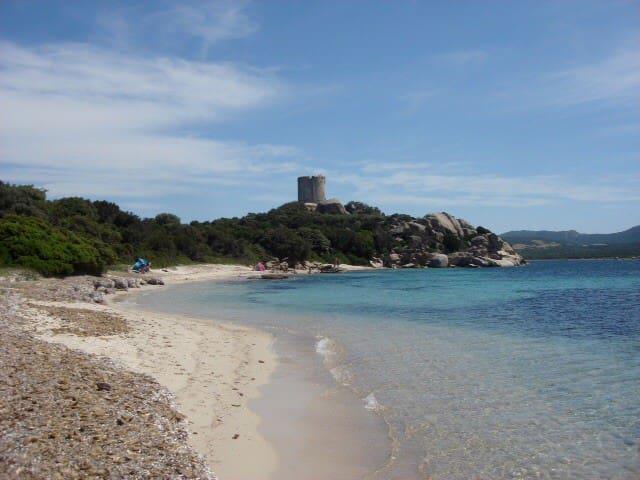 Plage de la tour . Golfe de Figari - Pianottoli-Caldarello - Hus