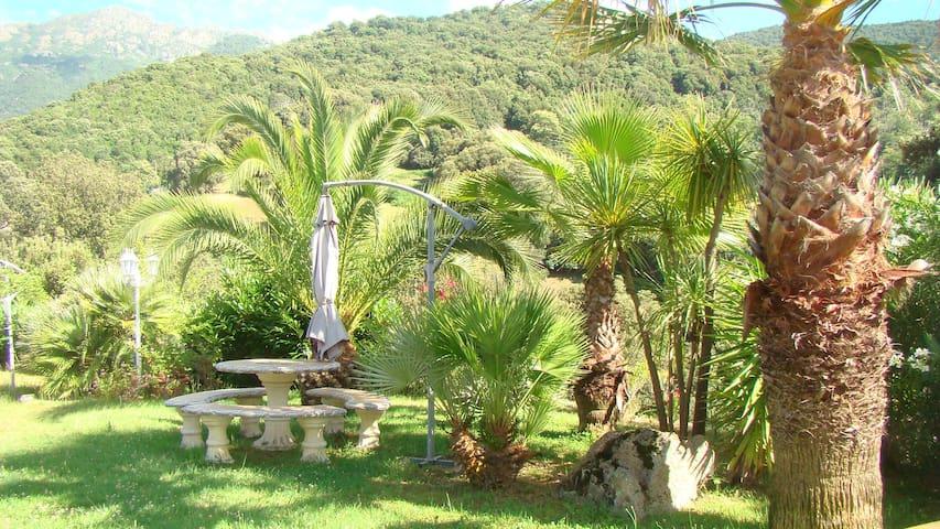 Mini villa a 20 minutes de porticcio - Bastelica - Vila