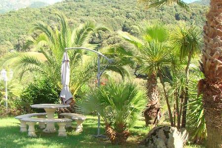 Mini villa a 20 minutes de porticcio - Bastelica - Huvila