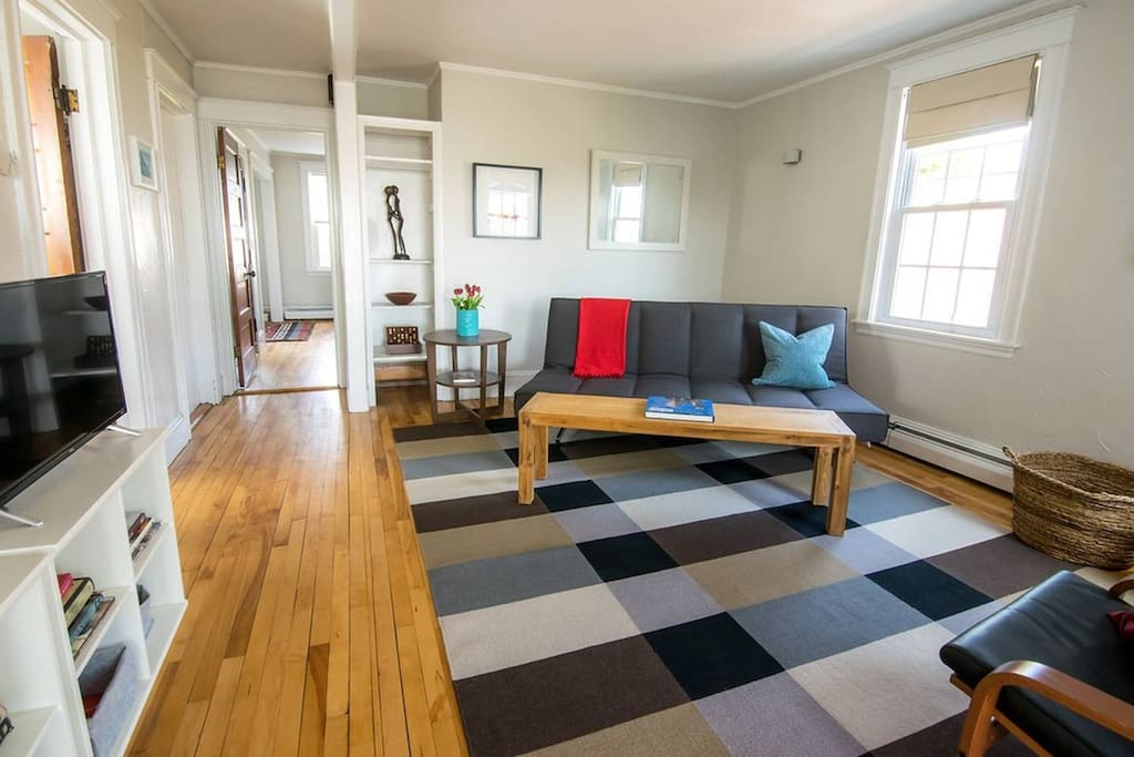 Spacious, airy living room with lofty feel. Comfy modern pull out sleeper from CB2 that sleeps two