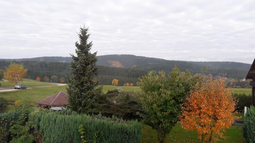 Ferienwohnung mit Blick ins schöne Erzgebirge - Schönheide