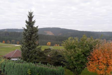 Ferienwohnung mit Blick ins schöne Erzgebirge - Schönheide - Квартира