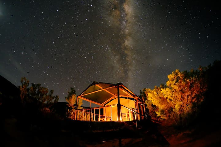 Agama Tented Camp - Garies - Tent