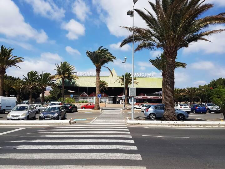 San Fernando Locals Market