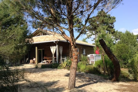 Villa au milieu des pins, entre bassin et océan - CAP FERRET