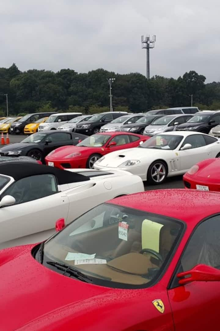 Ferrari's for sale on the day