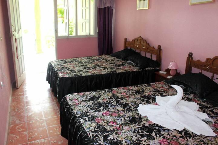 Hostal Amarilys y Andres (Room 1) - Trinidad - Lägenhet