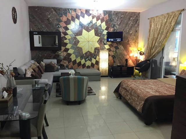 A luxurious fully furnished studio