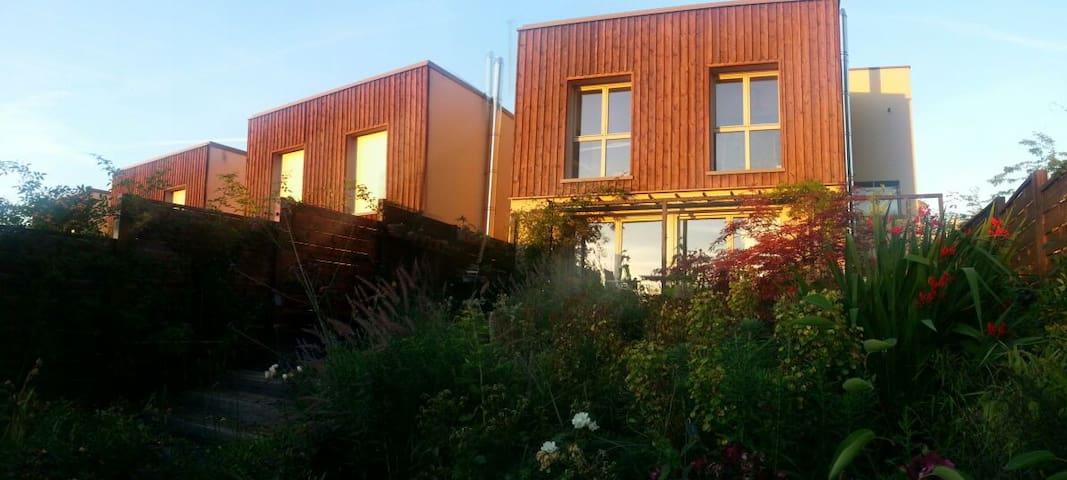 Maison contemporaine et jardin - Quartier Château