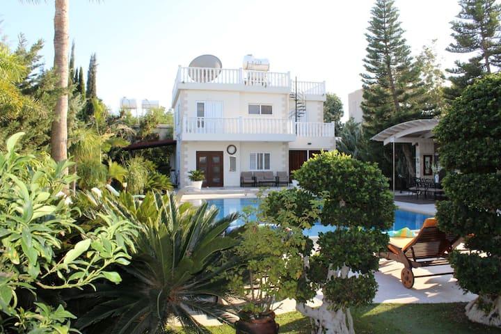Villa Diamont on Nissi, with beautiful garden