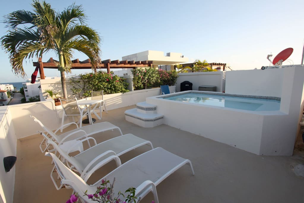 Your private rooftop area with plunge pool, BBQ and lounge chairs