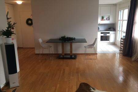 Comfortable 3 rooms apartment in Horgen - Horgen