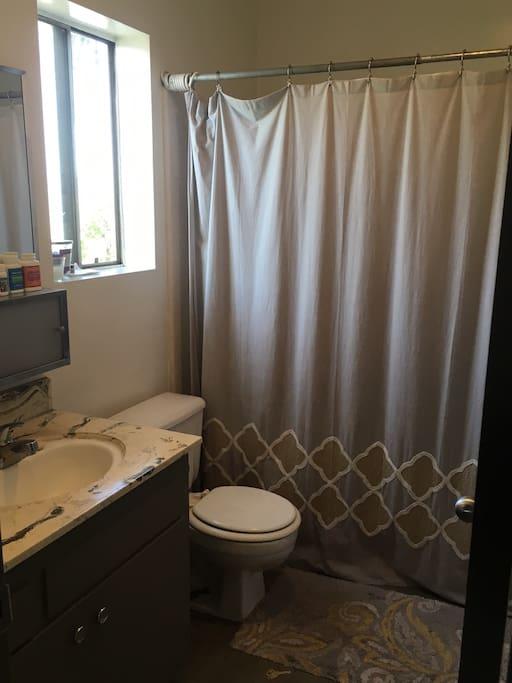 Bathroom (tub + shower)