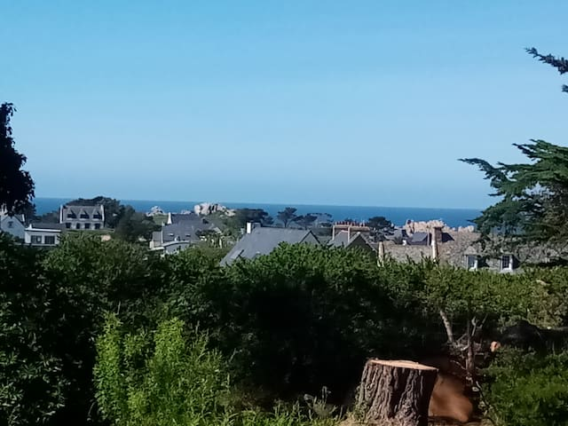 Belle vue mer au Diben