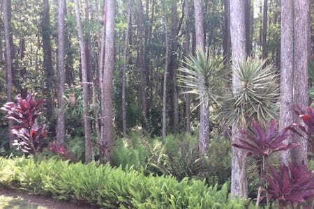 Conservation Nature Preserve in the ❤️ Tampa - Tampa