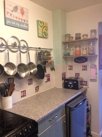 Kitchen food prep area and fridge