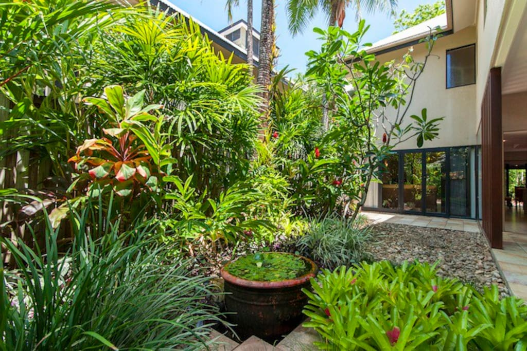 Your courtyard with tropical garden