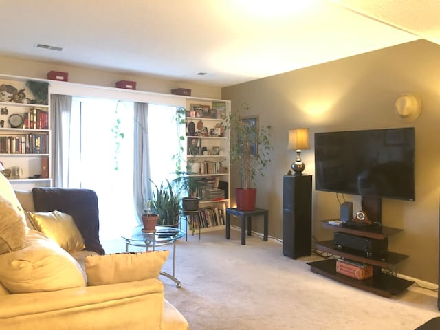 Entire furnished 2BD condo walk to downtown
