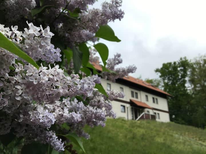 FuchsAmSee - ein magischer Ort im Grünen!
