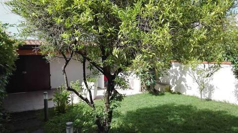 Vale's lovely garden flat